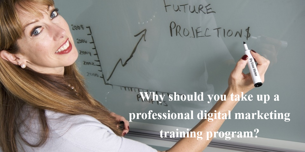 Why should you take up a professional digital marketing training program?