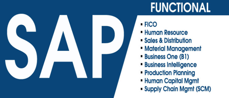 Best Sap Training Course Institute in Delhi, Sap Course Fees in Delhi