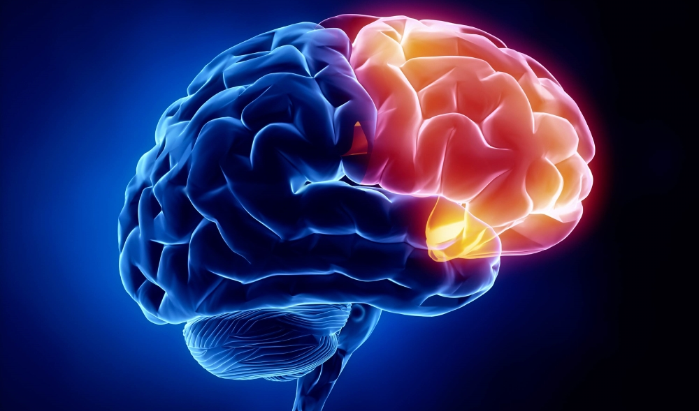 How Epilepsy is related to Traumatic Brain Injuries