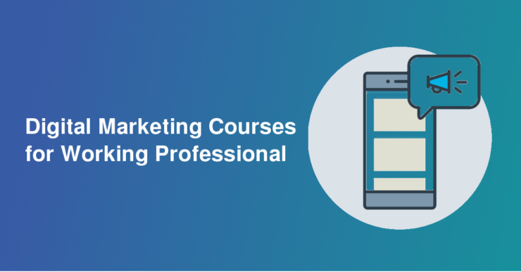 Best Digital Marketing Course in Amritsar, SEO Training in Amritsar