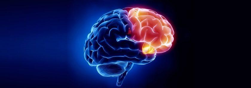 #10 Best Hospitals for Brain Tumorin India