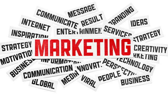 Career in Marketing Management
