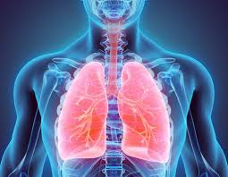 Consult Top 10 Pulmonologist in Turkey to treat Bronchitis