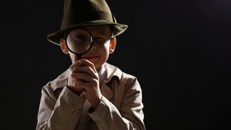 Detective agency in chandigarh, Private Detective in Chandigarh