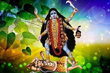 Noida +91-9910352955 Love Marriage Specialist Astrologer