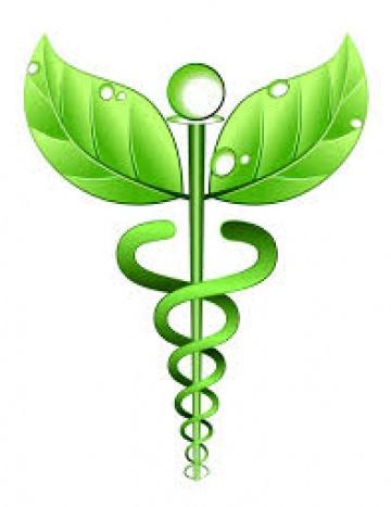Body & Mind Homeopathy